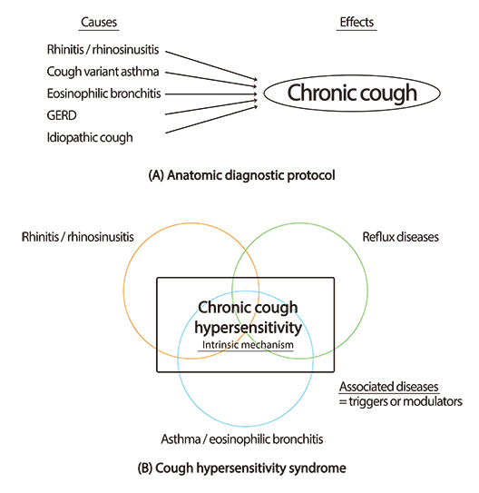connection between gerd bronchitis
